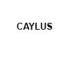 Galería Caylus